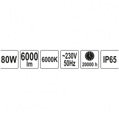 Darbo lempa COB LED 80W, 6000Lm 4