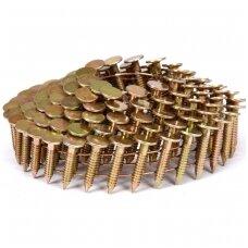 Vinys būgniniam viniamušiui stogo darbams 22mm / 3,1mm  4200 vnt.